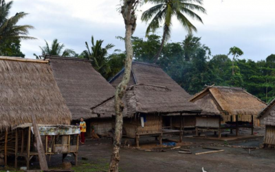 Indigenous architecture saves lives in Lombok quakes